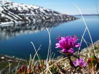 <h5>Nuuk</h5><p>Klaus Eugenius har sendt dette smukke billede. © Klaus Eugenius</p>