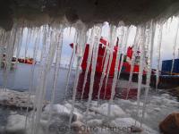 <h5>Qaqortoq </h5><p>Billedet taget nede ved havnen. Photo/foto © Gert Otto Hansen</p>