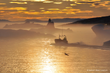 <h5>Qeqertarsuaq</h5><p>Billede 4: © Saalamiit Møller Lorentzen</p>