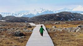 <h5>Ilulissat</h5><p>© Hervé Danis. Picture from Ilulissat. A young worldexplorer.</p>