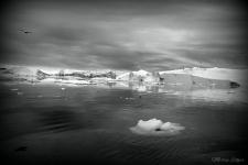 <p>Billede 40: © Morten Høgh Elkjær.</p>