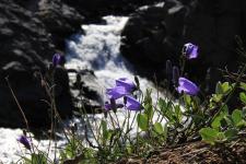 <h5>Tasiilaq</h5><p>© Helene Brochmann har taget dette smukke billede i Tasiilaq.</p>