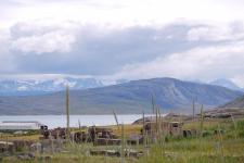 <h5>Sommer i Qaqortoq</h5><p>© Najaaraq Fontain. Najaaraq har taget dette smukke billede i Igaliko, nær Qaqortoq.</p>