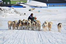 <h5>Greenland - land of beauty 2017</h5><p>Billede nr. 39:    ©Saalamiit Møller Lorentzen har taget dette billede.</p>