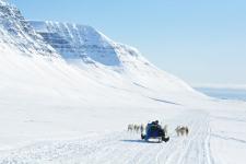 <h5>Greenland - land of beauty 2017</h5><p>Billede nr. 38:    ©Saalamiit Møller Lorentzen har taget dette billede.</p>