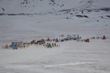 <h5>Greenland - land of beauty 2017</h5><p>Billede nr. 40:    ©Saalamiit Møller Lorentzen har taget dette billede.</p>