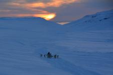 <h5>Greenland - land of beauty 2017</h5><p>Billede nr. 41:     ©Saalamiit Møller Lorentzen har taget dette billede.</p>