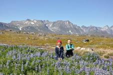 <h5>Greenland - land of beauty 2016</h5><p>Billede nr. 48:    © Thala Geraae-Nielsen.  Qeqertarsuarmi juulliaraq aallartittoq iliveqarfik eqqaalu naneruutinik ikiterneqarsimasoq assilisaavoq. </p>