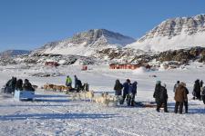 <h5>Greenland - land of beauty 2016</h5><p>Billede nr. 52: © Thala Geraae-Nielsen.  eqertarsuarmi Avannaata Qimussersuanut anngunniuttut. </p>