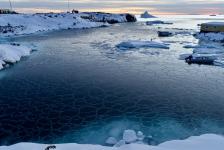<h5>Qeqertarsuaq</h5><p>© Klaus Eugenies har taget dette billede i Qeqertarsuaq.</p>