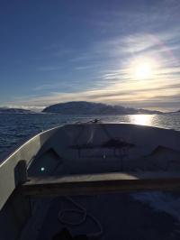 <h5>Qaqortoq</h5><p>© Nuka Korsgaard har taget dette billede nær Qaqortoq.</p>